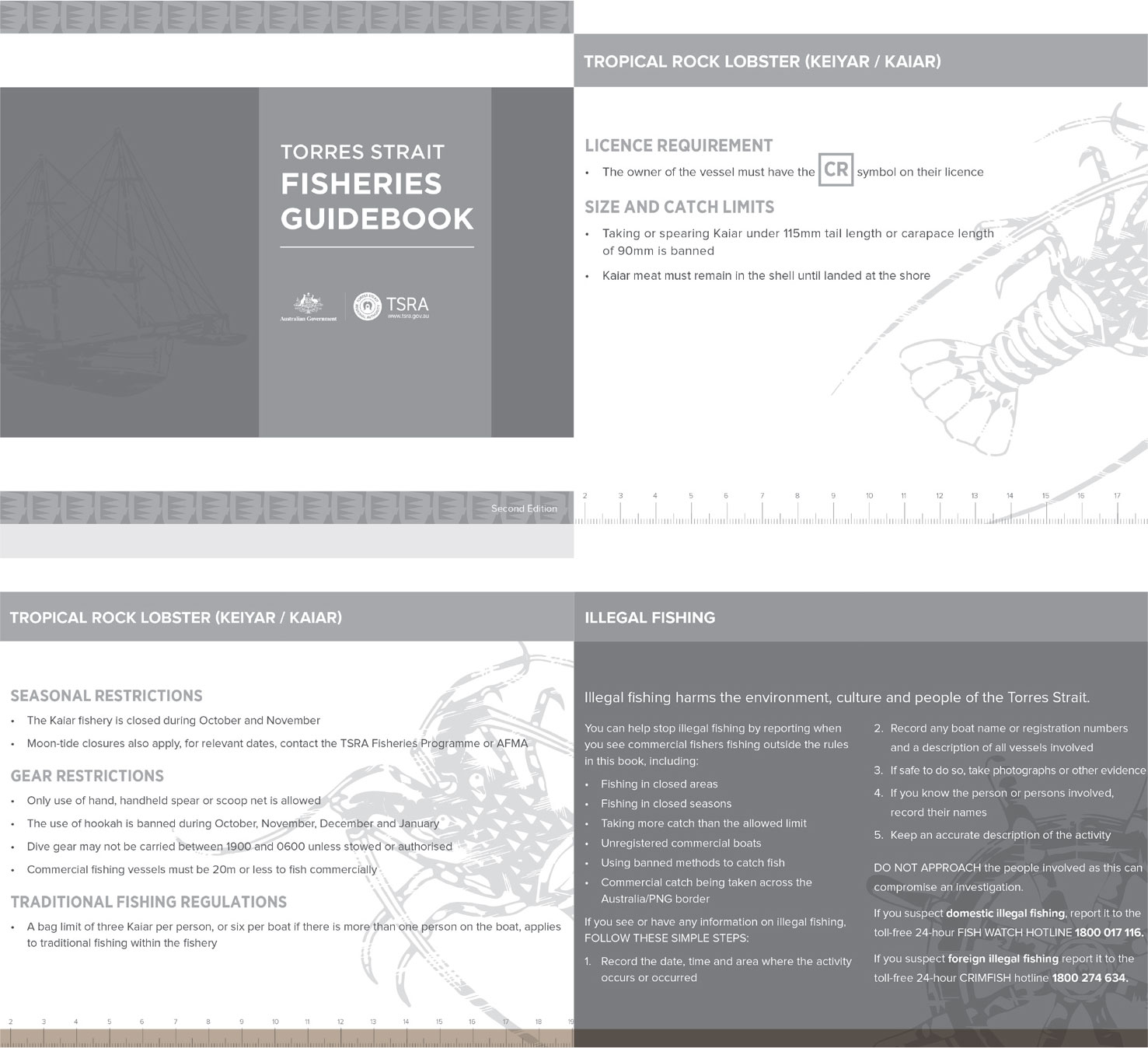 a photograph of THE TORRES STRAIT FISHERIES GUIDEBOOK-A ONE-STOP GUIDE TO THE ESSENTIAL INFORMATION FOR EACH OF THE COMMERCIAL SPECIES IN THE TORRES STRAIT.