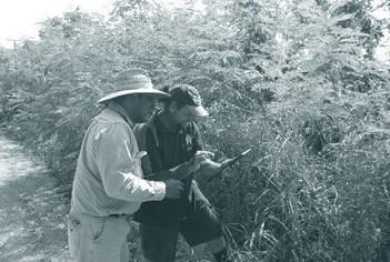 TSC and TSIRC staff mapping leucaena