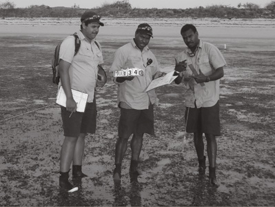 A photograph showing three workers monitoring seagrass
